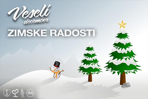 banner-spletna-projekt-zimske-radosti-1